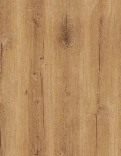 Ilgaz Oak 1