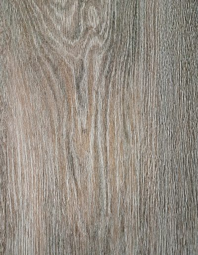 Scale Oak 1